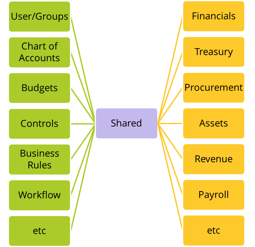 The Nature of Software Investments 3